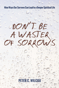 Don't Be a Waster of Sorrows: Nine Ways Our Sorrows Can Lead to a Deeper Spiritual Life