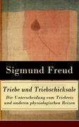 Triebe und Triebschicksale - Die Unterscheidung vom Triebreiz und anderen physiologischen Reizen
