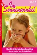 Im Sonnenwinkel 17 - Familienroman