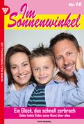 Im Sonnenwinkel 16 - Familienroman