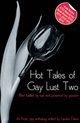 Hot Tales of Gay Lust Two: Gay erotic fiction