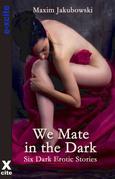 We Mate in the Dark: Dark Erotica Stories