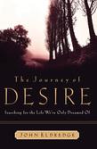 The Journey of Desire