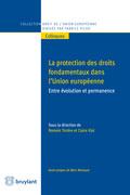 Protection des droits fondamentaux dans l'union Européenne