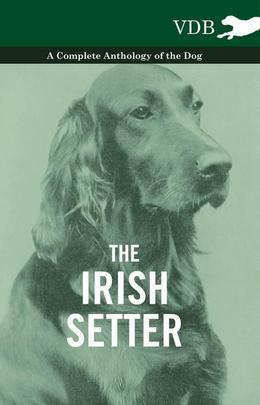 The Irish Setter - A Complete Anthology of the Dog