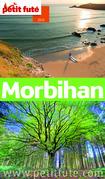 Morbihan 2015 (avec cartes, photos + avis des lecteurs)