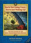 You Re Not Going Crazy . . . You Re Just Waking Up!: The Five Stages of the Soul Transformation Process