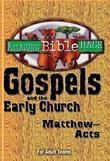 Amazing Bible Race - For Adult Teams (Matthew-Acts): Gospels and the Early Church (Matthew-Acts)