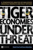 Tiger Economies Under Threat