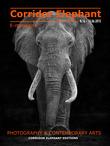 E-magazine Corridor Éléphant N°16