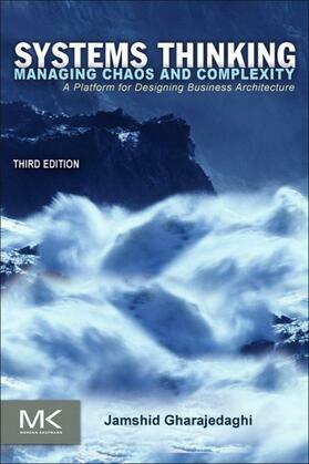 Systems Thinking: Managing Chaos and Complexity: A Platform for Designing Business Architecture