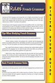 French Grammar ( Blokehead Easy Study Guide)