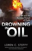 Drowning in Oil : BP & the Reckless Pursuit of Profit: BP & the Reckless Pursuit of Profit