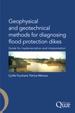 Geophysical and Geotechnical Methods for Diagnosing Flood Protection Dikes