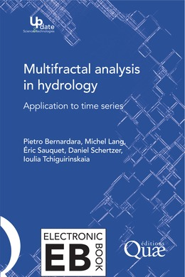 Multifractal Analysis in Hydrology