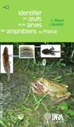 Identifier les oeufs et les larves des amphibiens de France