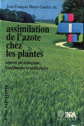 Assimilation de l'azote chez les plantes
