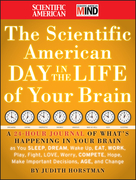 The Scientific American Day in the Life of Your Brain