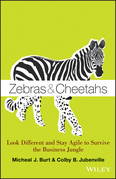 Zebras and Cheetahs