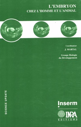 L'embryon chez l'homme et l'animal