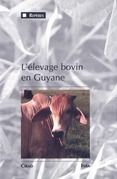 L'élevage bovin en Guyane