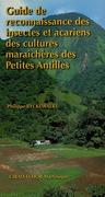 Guide de reconnaissance des insectes et acariens des cultures maraîchères des Petites Antilles