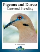 Pigeons and Doves: Care and Breeding
