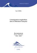L'immigration maghrébine dans la littérature française