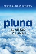 PLUNA, el riesgo de volar alto