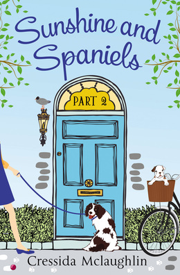 Sunshine and Spaniels (A novella): A happy, yappy love story (Primrose Terrace Series, Book 2)