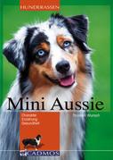 Mini Aussie