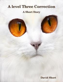 A Level Three Correction: A Short Story