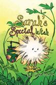 Sarah's Special Wish