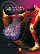 La anatomía de las lesiones deportivas