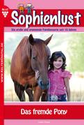 Sophienlust 47 - Liebesroman