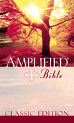 Amplified Bible, eBook