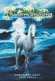 Phantom Stallion: Wild Horse Island #4: Castaway Colt