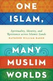 One Islam, Many Muslim Worlds: Spirituality, Identity, and Resistance across the Islamic Lands