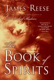 The Book of Spirits