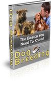 Dog Breeding: The Basics You Need To Know!
