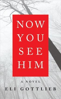Now You See Him: A Novel