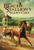 The Black Stallion's Sulky Colt