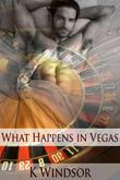 What Happens in Vegas: An Erotic Gay Fantasy