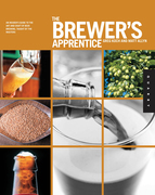 The Brewer's Apprentice: An Insider's Guide to the Art and Craft of Beer Brewing, Taught by the Masters