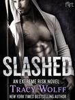 Slashed: An Extreme Risk Novel