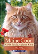 Maine Coon - Wilde Schale weicher Kern