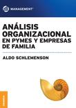 Análisis organizacional en PYMES y empresas de familia