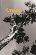 Crece: Profundiza tu Relación con Cristo