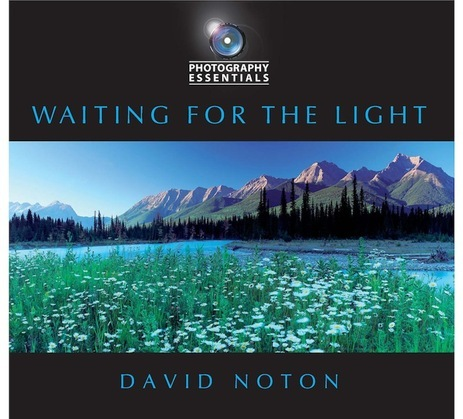 Photography Essentials: Waiting for the Light: Waiting for the Light