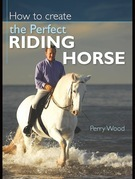 How to Create the Perfect Riding Horse